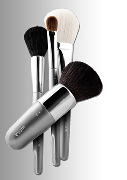 ESUM Brushes